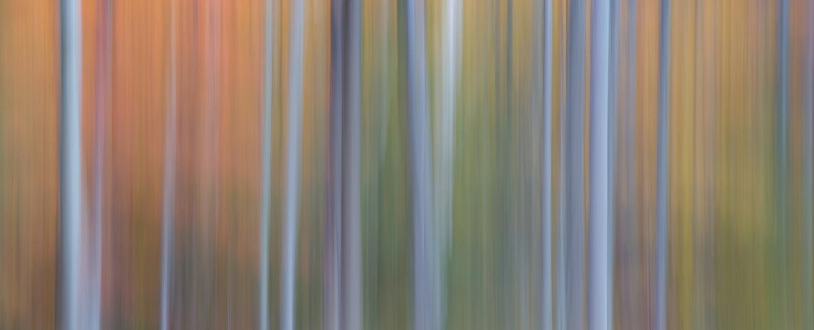 Matt Hansen Photography