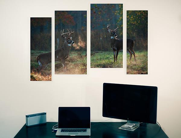 4 Panel Wall Display